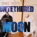 Built To Spill [Untethered Moon]