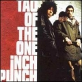 Tao Of The One Inch Punch