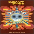Super Furry Animals [Rings Around The World]