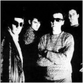 The Television Personalities [The Painted Word]